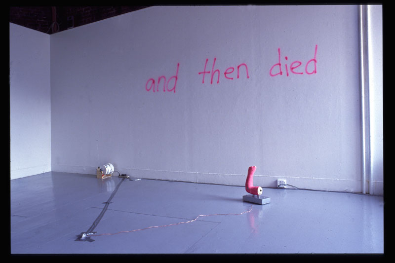 PINK ARM LIVED AND THEN DIED, mareike lee